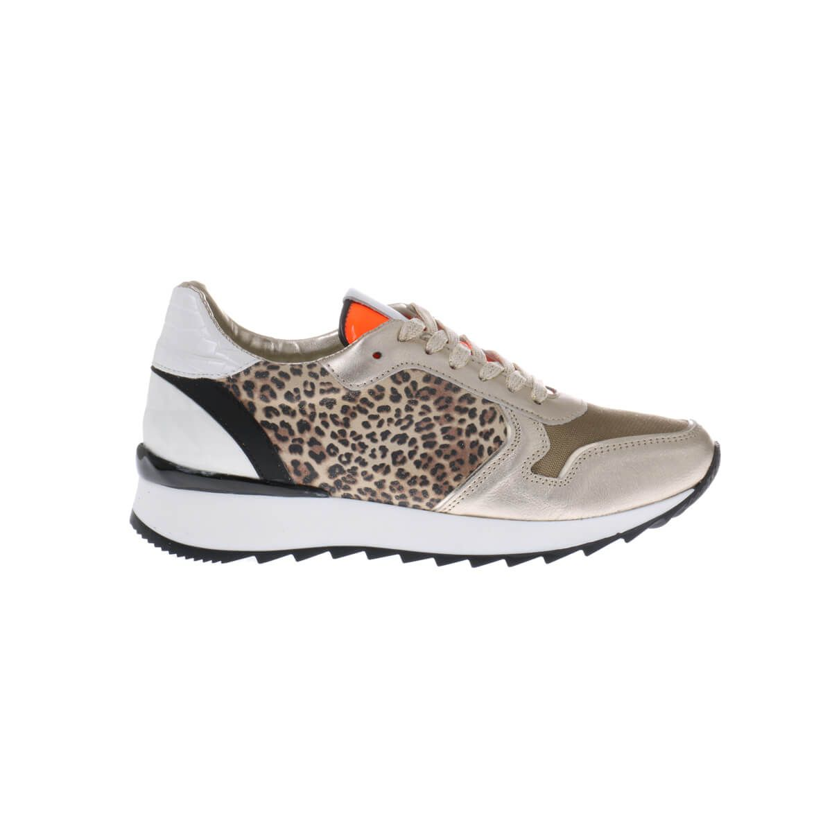 HIP Shoe Style for women D1889 Sneakers Goud Panterprint