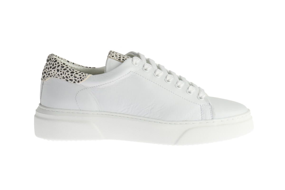 HIP D1268 Sneakers Wit Giraffeprint